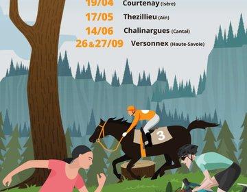 Affiche défi-nature 2020.jpg
