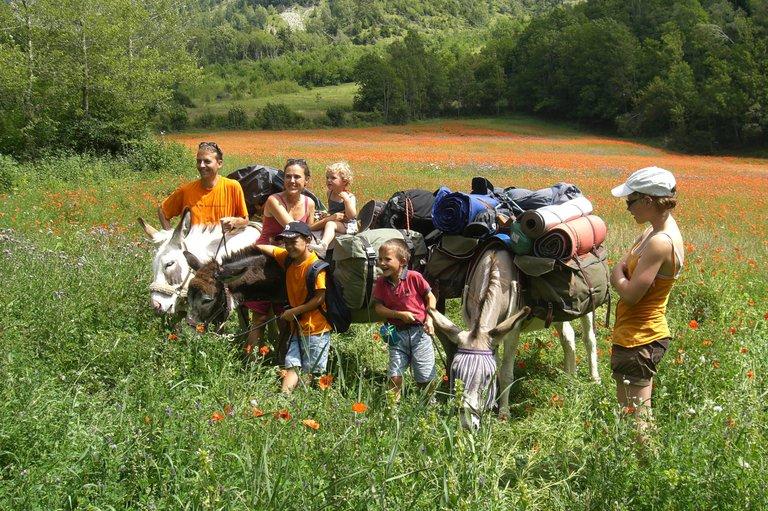 rando ânes & familles (photo altalika).JPG
