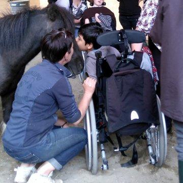 Handicap (3).JPG