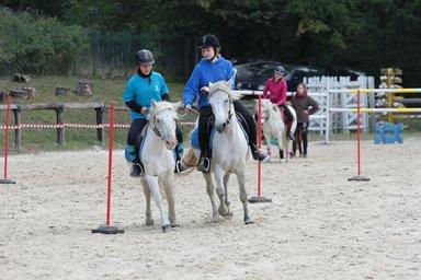 pony games équipe rapeaux.jpg