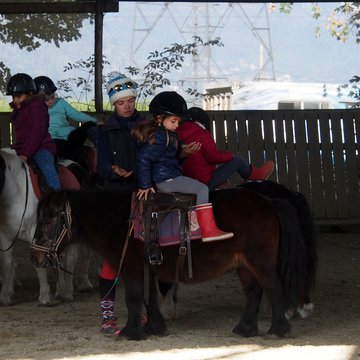 Fêtes d'anniversaire à poney dans le Vercors