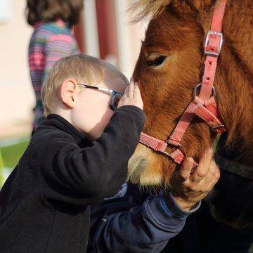 Pony party à la ferme
