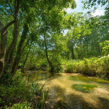 Espace Naturel Sensible de la Zone humide et du ruisseau de Saint-Savin