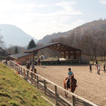 Stage de liberté : une autre approche de l'équitation