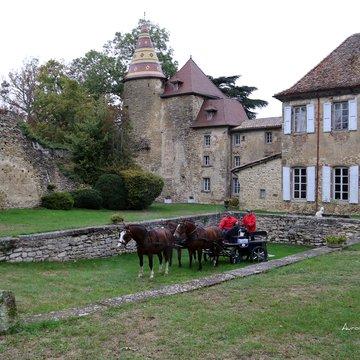 Château et forêt de Vallin à cheval