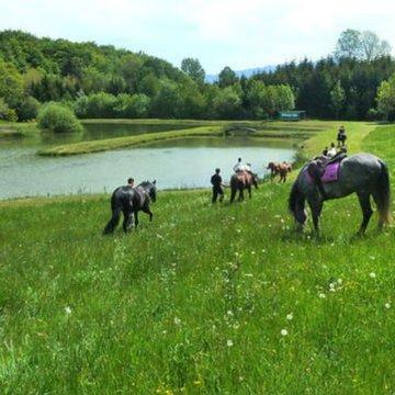 Balades à poney au pied de la Chartreuse
