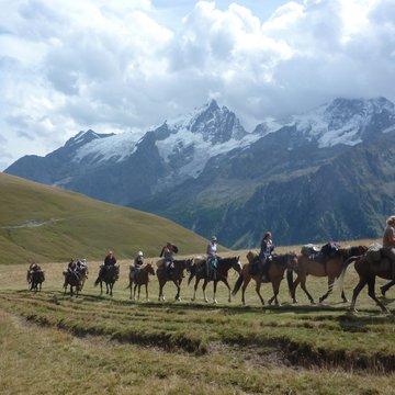 Ferme Equestre des 4 chemins
