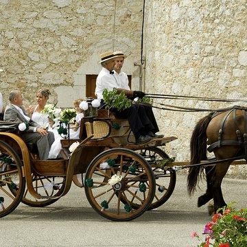 Arrivez en attelage à l'église pour votre mariage !