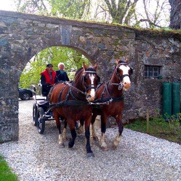 Les châteaux du Dauphiné en attelage - Caval' en Dauphiné