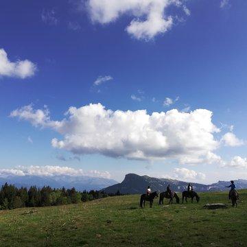 Balade à cheval sur le plateau du Vercors